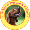 Irish Setter Rescue & Rehome Logo