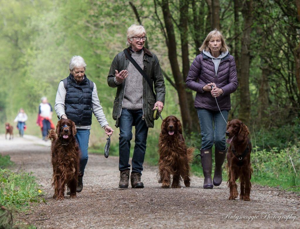 Matlock 2021 Sponsored Walk & Garden Party Cancelled 1