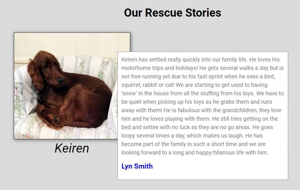 Our Rescue Stories 1